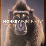 Monkey Portraits* (* and Some Apes) by Jill Greenberg