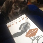 My cat, Brady, and Neruda on a Stormy Afternoon in San Francisco